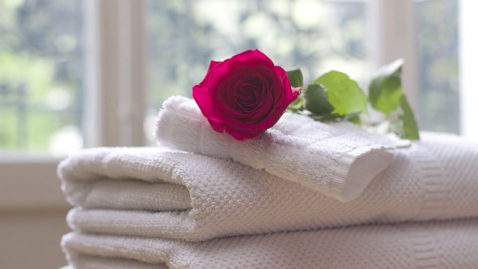 Rose on top of white bath towels